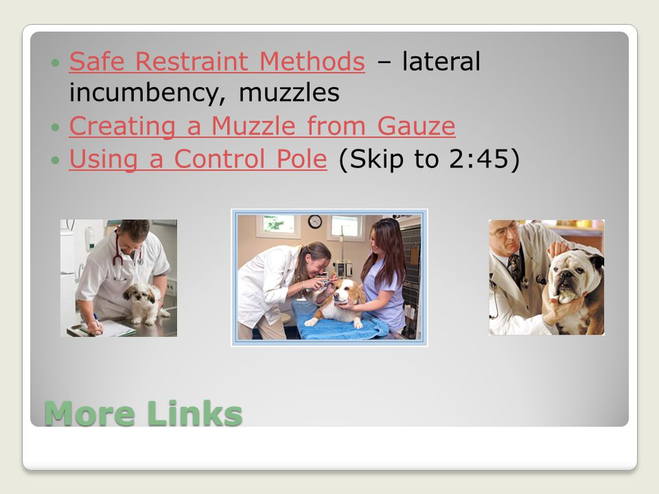 More Links Safe Restraint Methods – lateral incumbency, muzzles