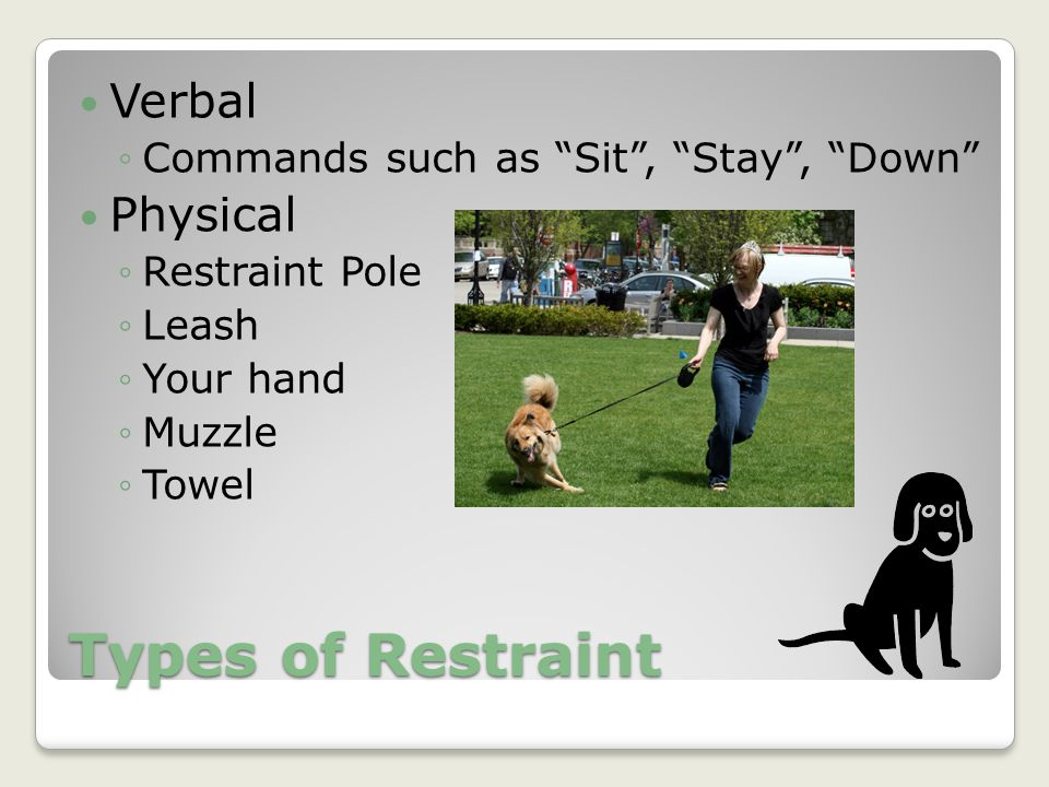 Types of Restraint Verbal Physical