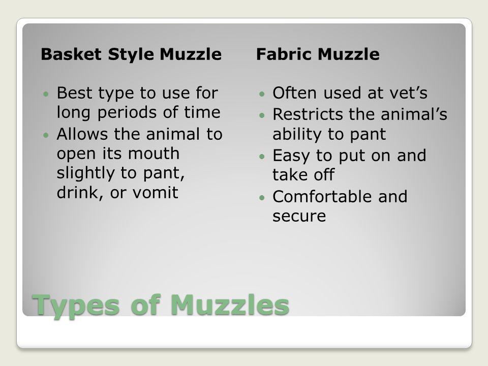 Types of Muzzles Basket Style Muzzle Fabric Muzzle
