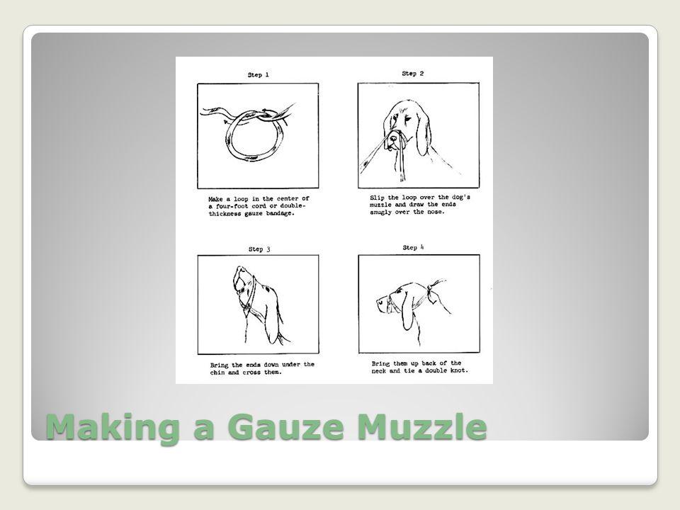 Making a Gauze Muzzle