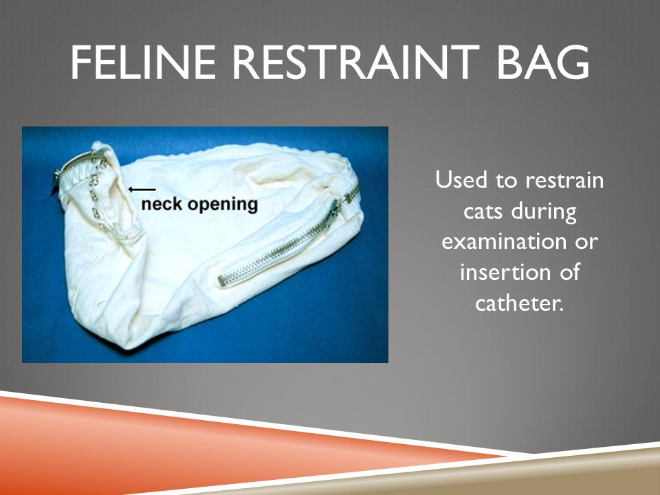 Used to restrain cats during examination or insertion of catheter.