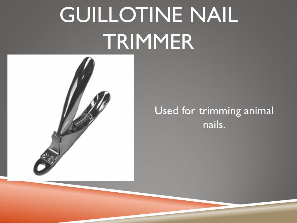 Guillotine nail trimmer