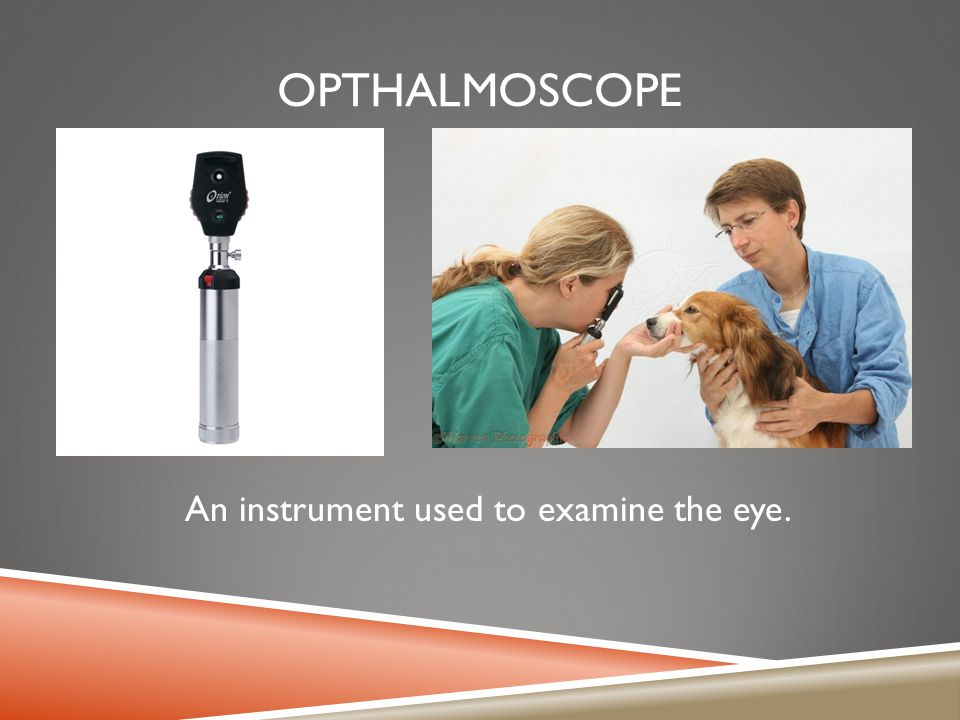An instrument used to examine the eye.