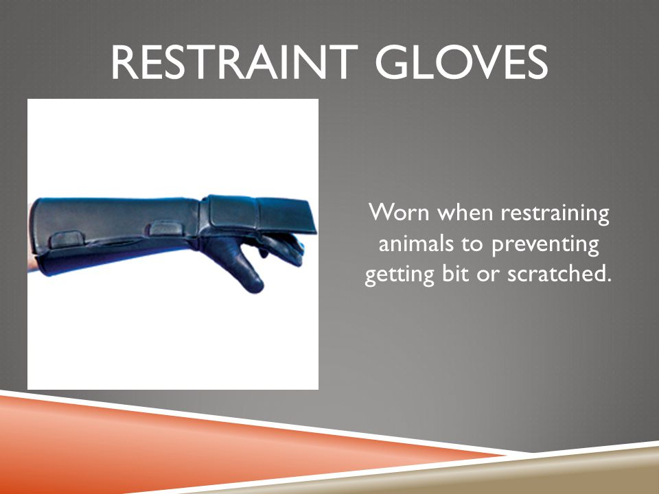 Worn when restraining animals to preventing getting bit or scratched.