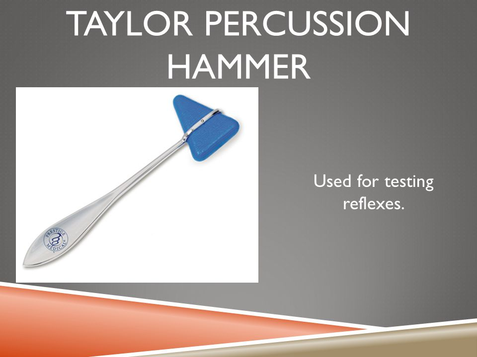 Taylor percussion hammer