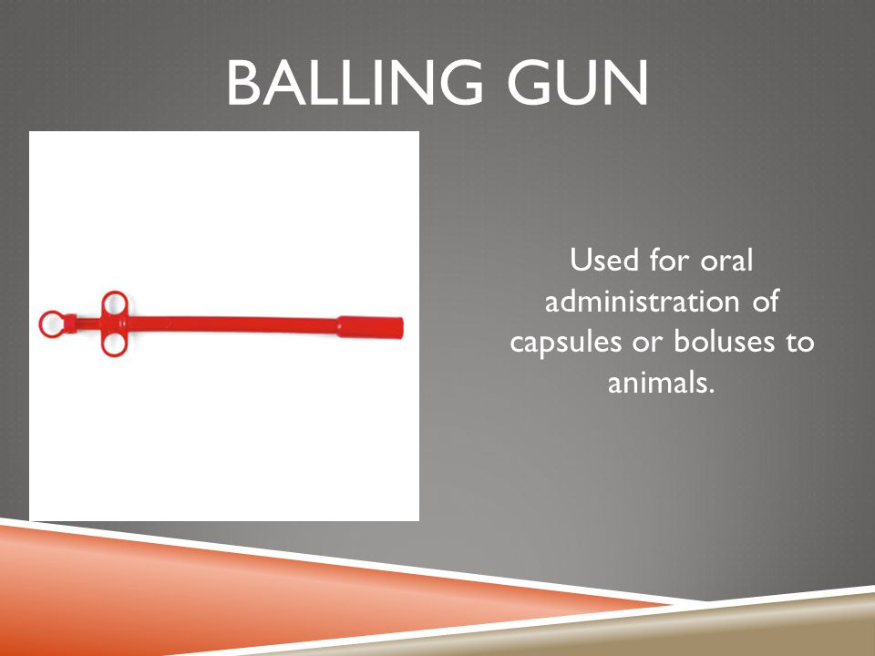 Used for oral administration of capsules or boluses to animals.