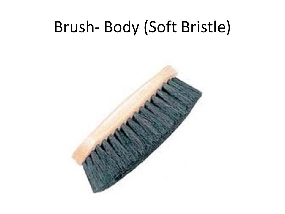 Brush- Body (Soft Bristle)