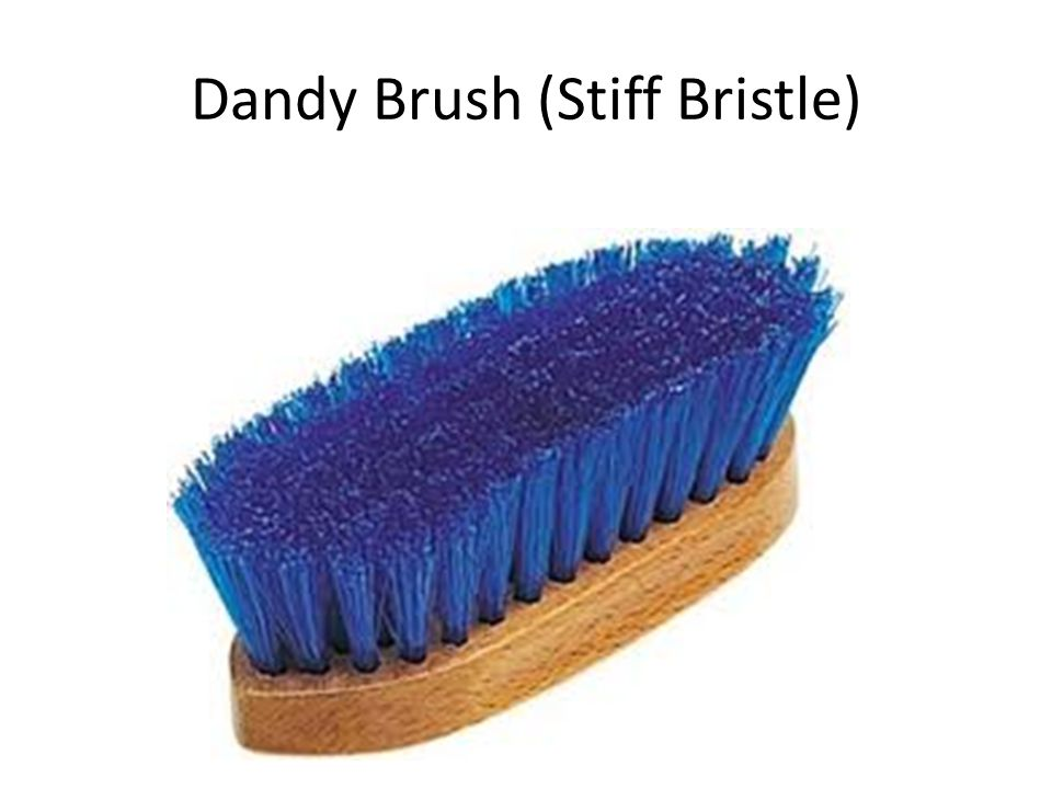 Dandy Brush (Stiff Bristle)