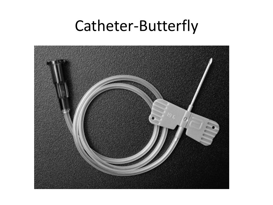 Catheter-Butterfly