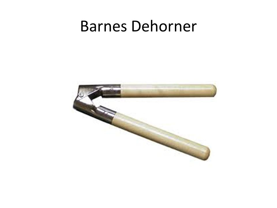 Barnes Dehorner