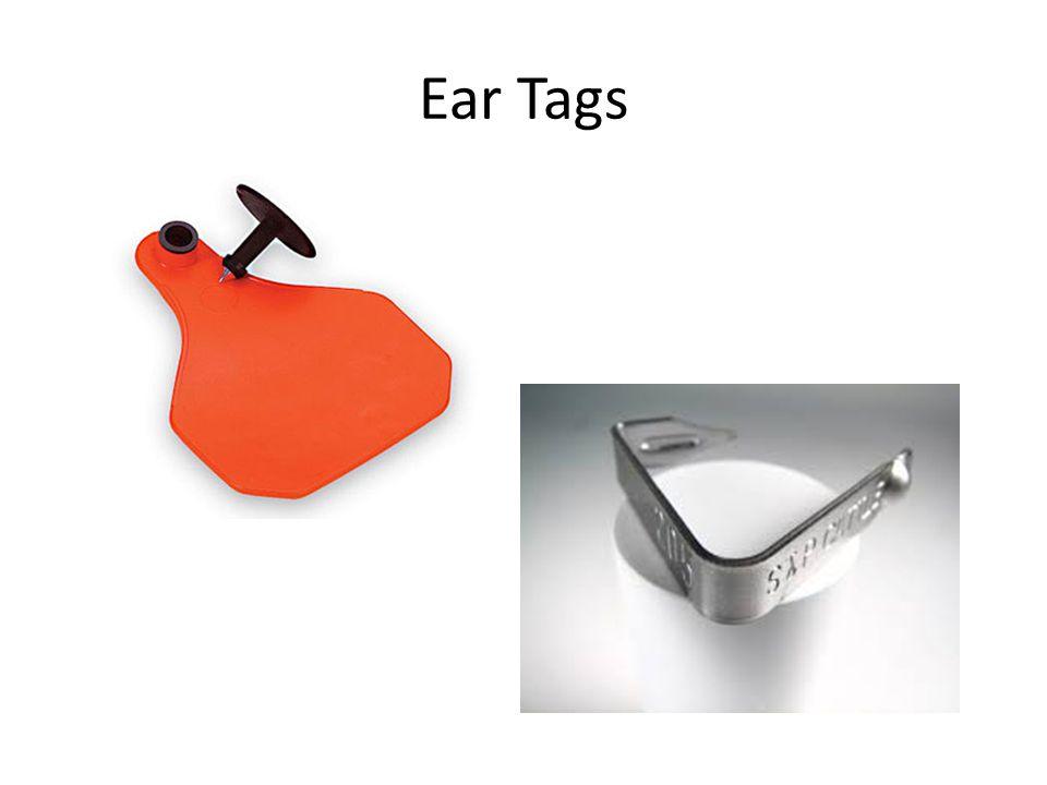 Ear Tags