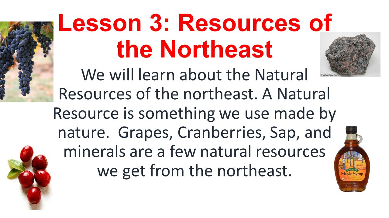 Lesson 3: Resources of the Northeast