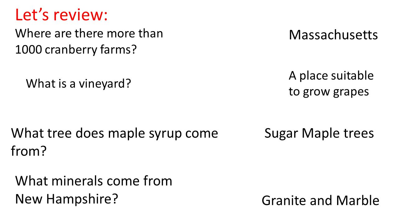 Let's review: Massachusetts What tree does maple syrup come from