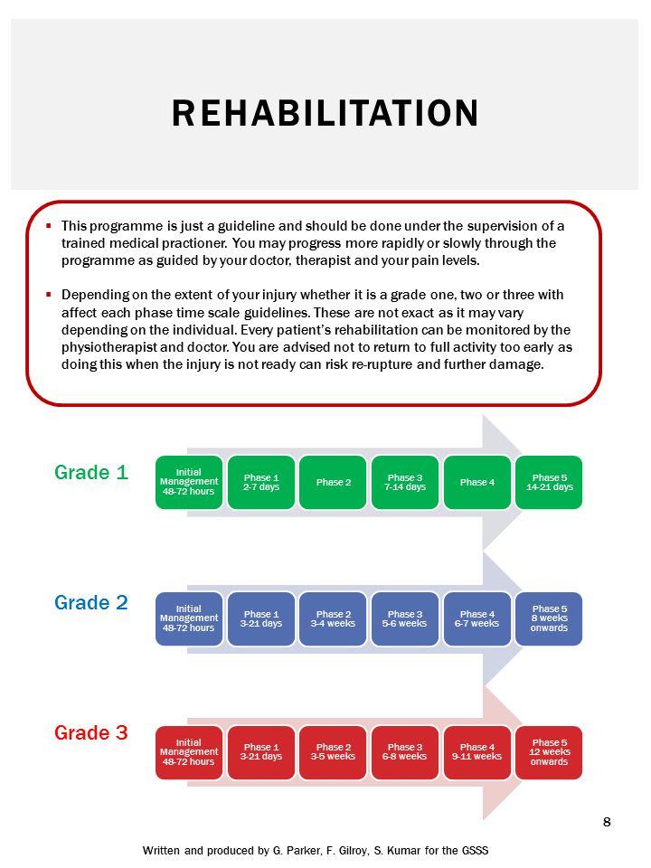 Rehabilitation Grade 1 Grade 2 Grade 3