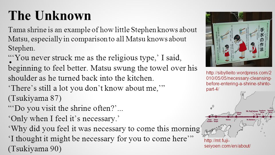 Stephen's Search for Bliss