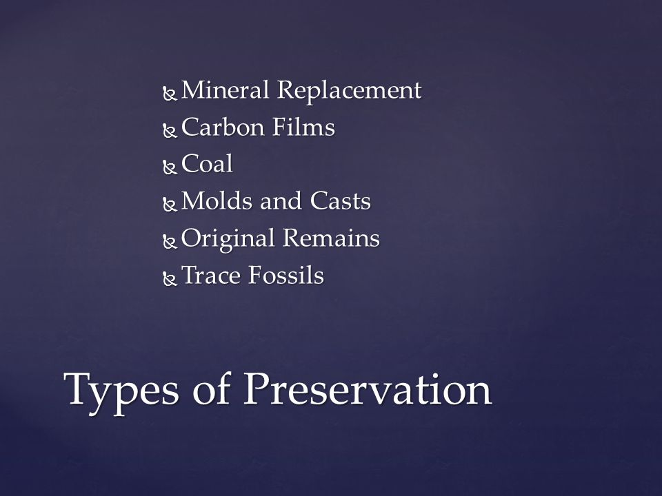 Types of Preservation Mineral Replacement Carbon Films Coal