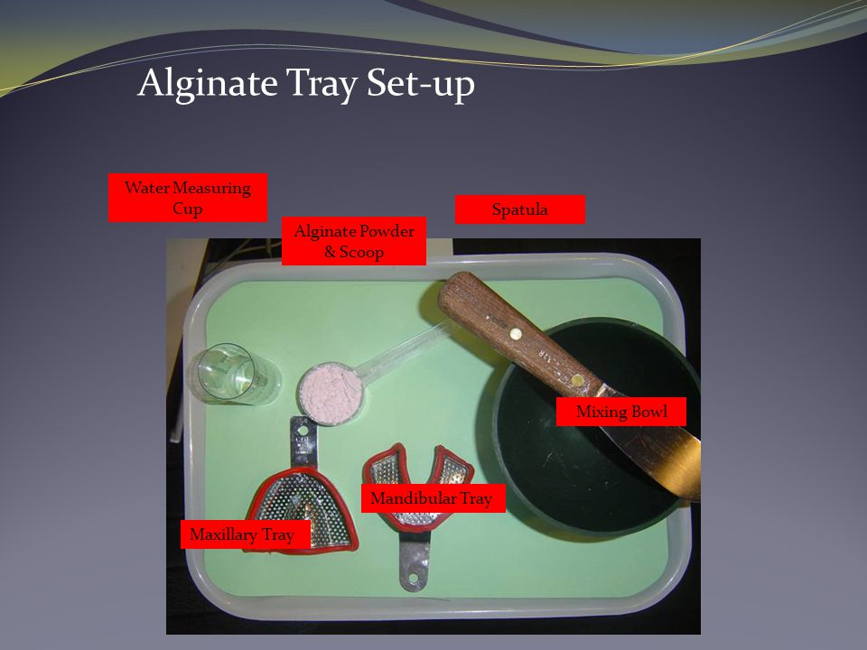 Alginate Powder & Scoop