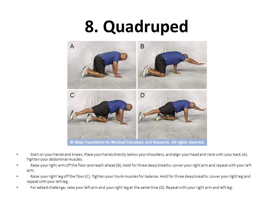 8. Quadruped