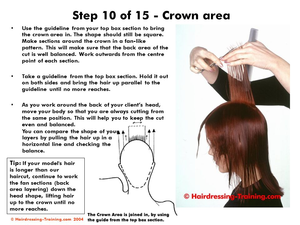 Step 10 of 15 - Crown area