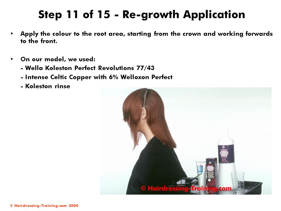 Step 11 of 15 - Re-growth Application