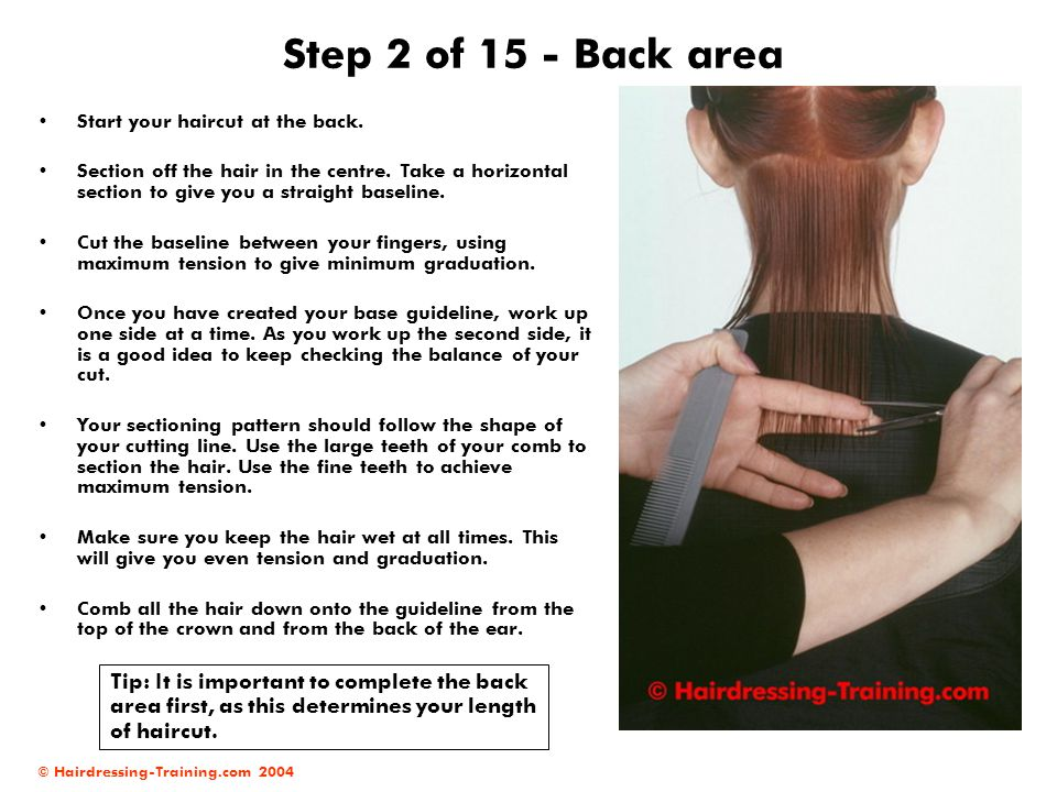 Step 2 of 15 - Back area Start your haircut at the back.