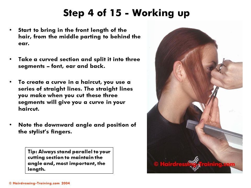 Step 4 of 15 - Working up Start to bring in the front length of the hair, from the middle parting to behind the ear.