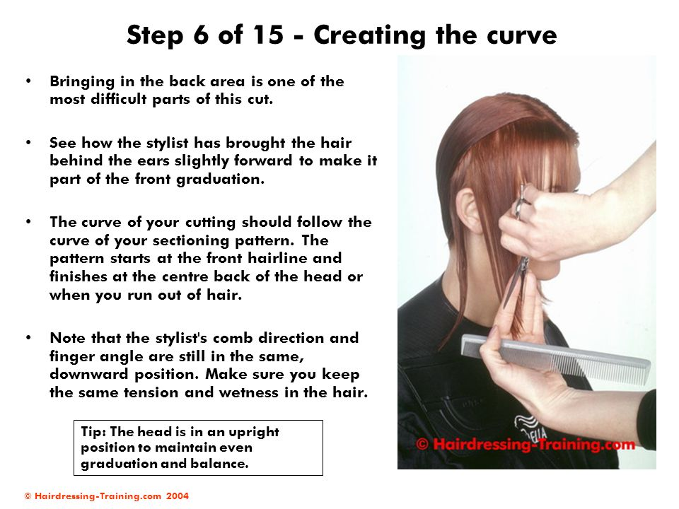 Step 6 of 15 - Creating the curve