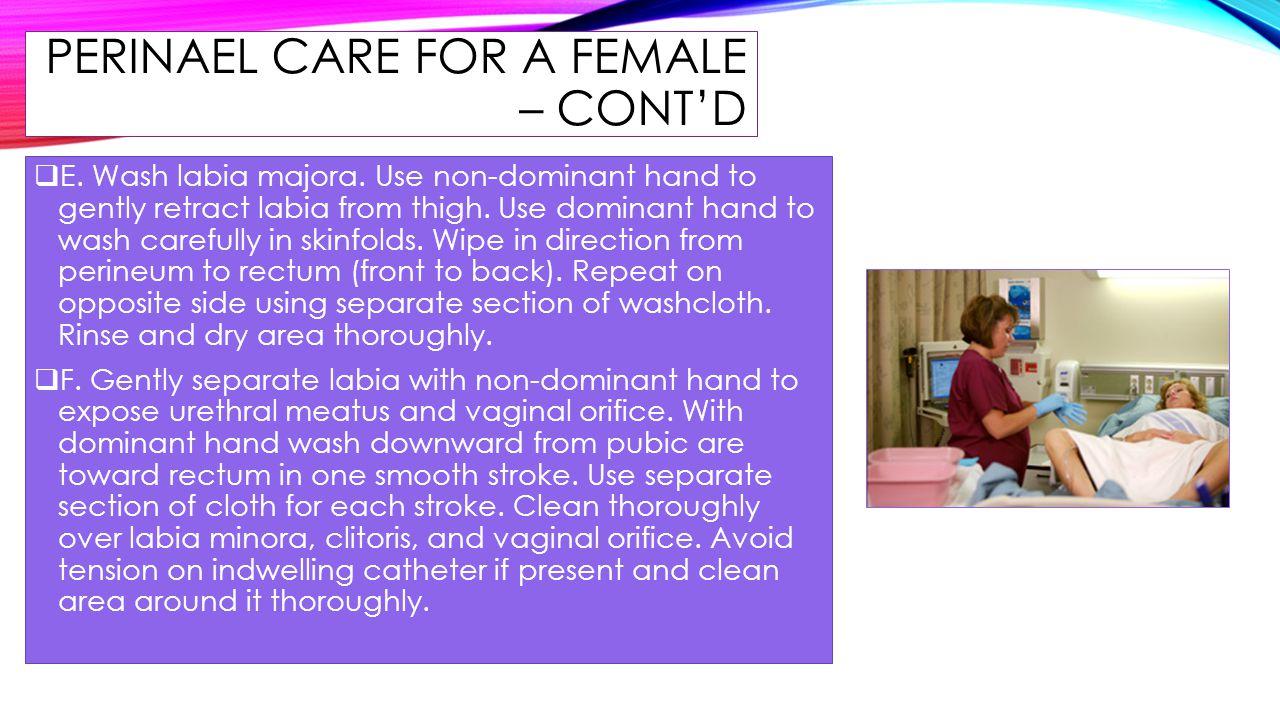 PERINAEL CARE FOR A FEMALE – CONT'D