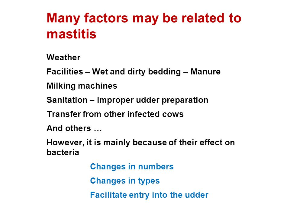 Many factors may be related to mastitis