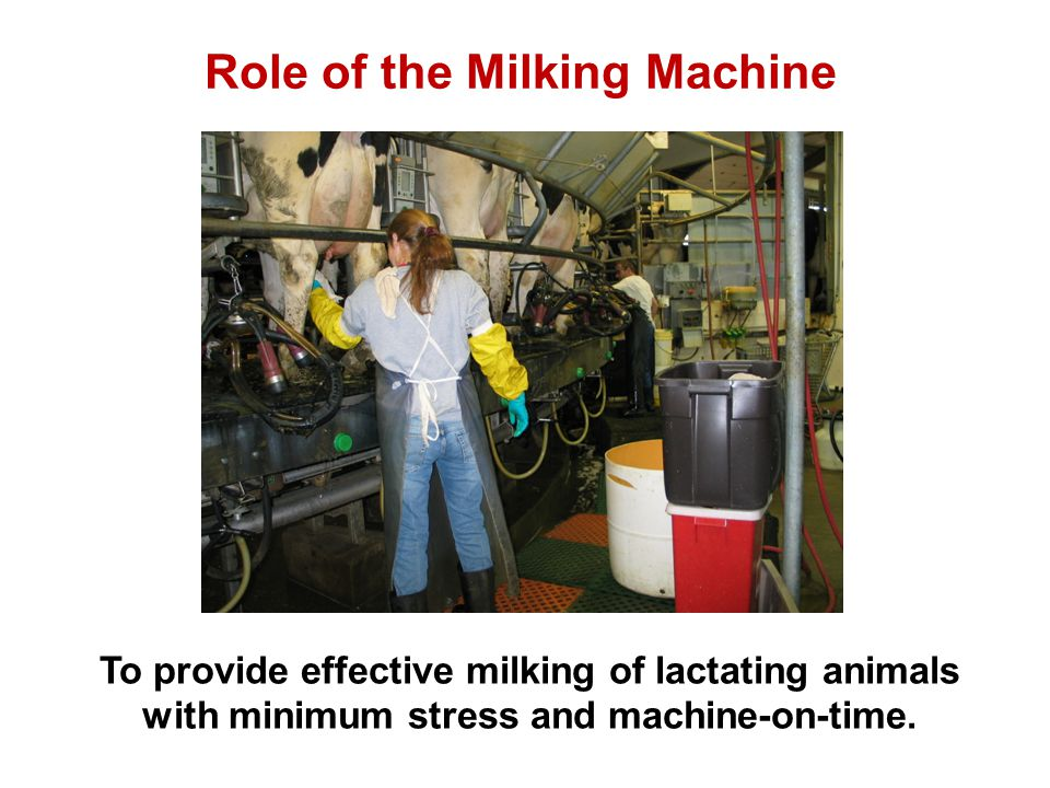 Role of the Milking Machine