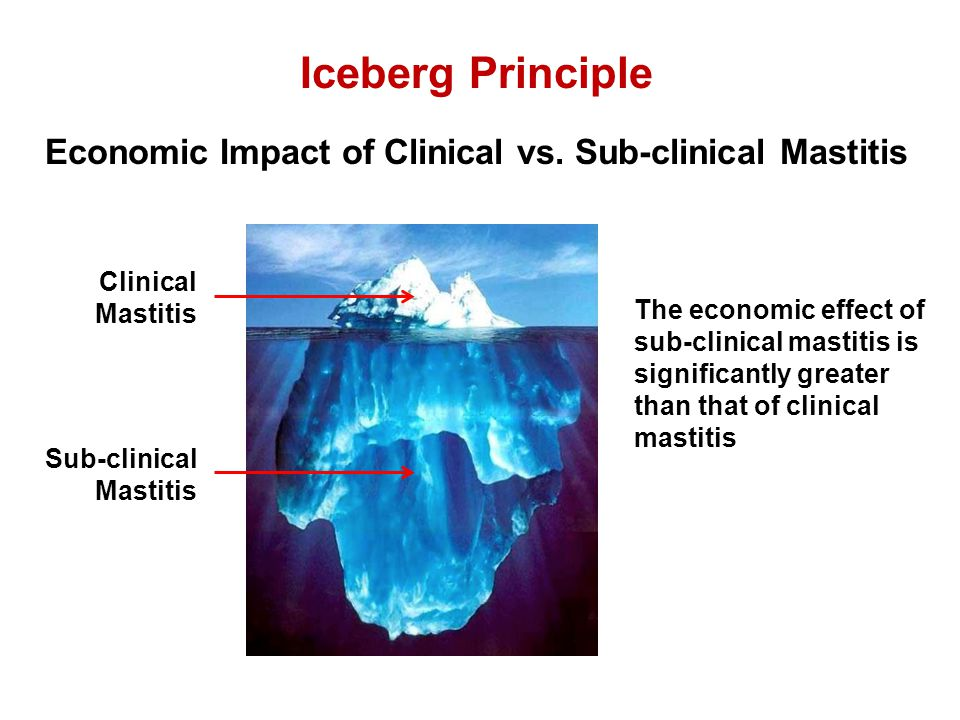 Iceberg Principle Economic Impact of Clinical vs. Sub-clinical Mastitis