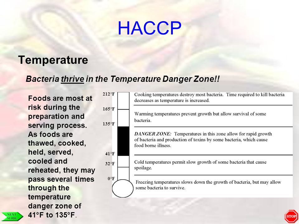 HACCP Temperature Bacteria thrive in the Temperature Danger Zone!!