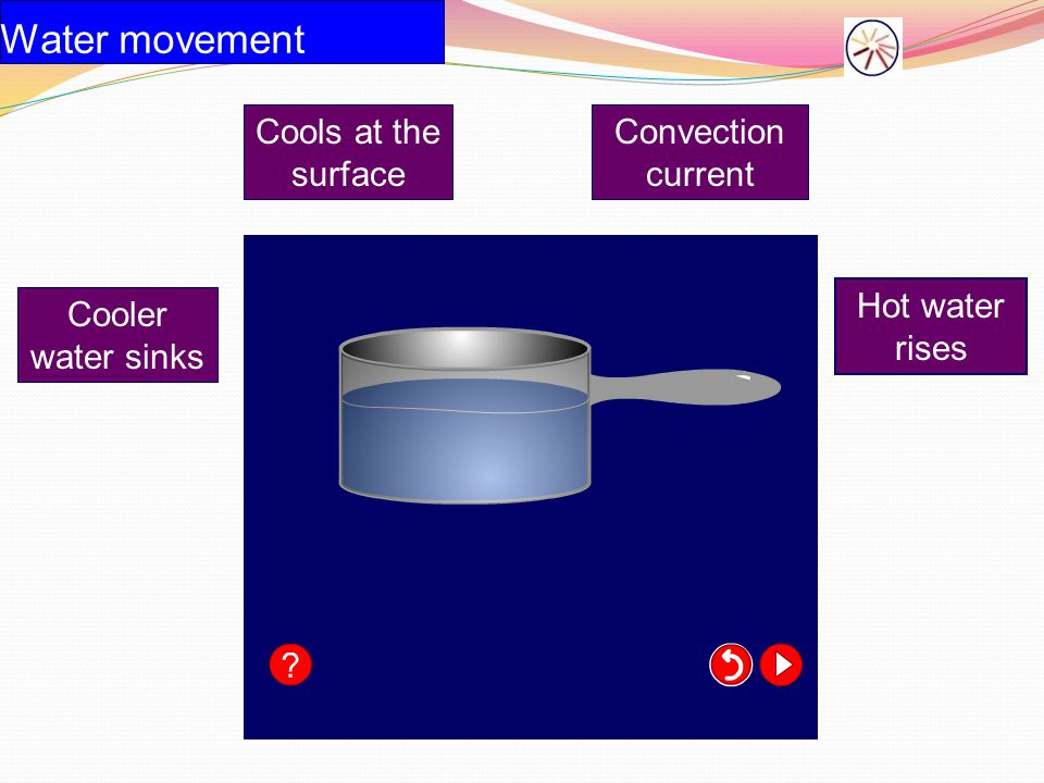 Water movement Cools at the surface Convection current Hot water rises