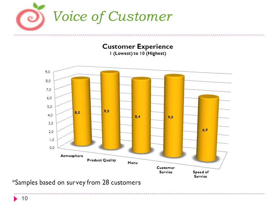 Voice of Customer *Samples based on survey from 28 customers