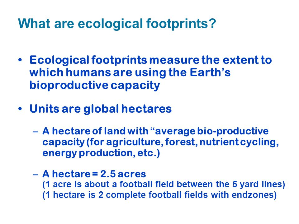 What are ecological footprints
