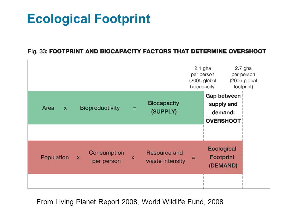 Ecological Footprint From Living Planet Report 2008, World Wildlife Fund, 2008.