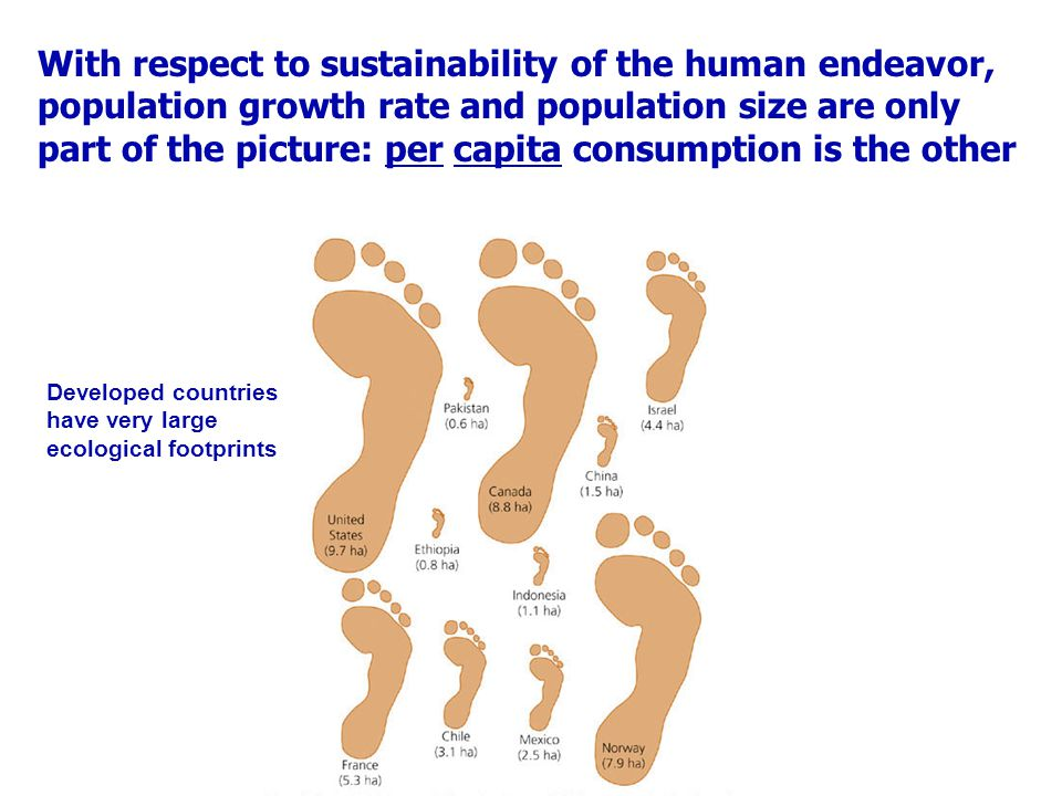 With respect to sustainability of the human endeavor, population growth rate and population size are only part of the picture: per capita consumption is the other