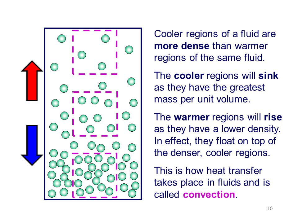Cooler regions of a fluid are more dense than warmer regions of the same fluid.