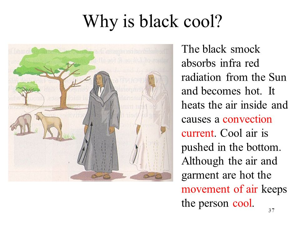 Why is black cool