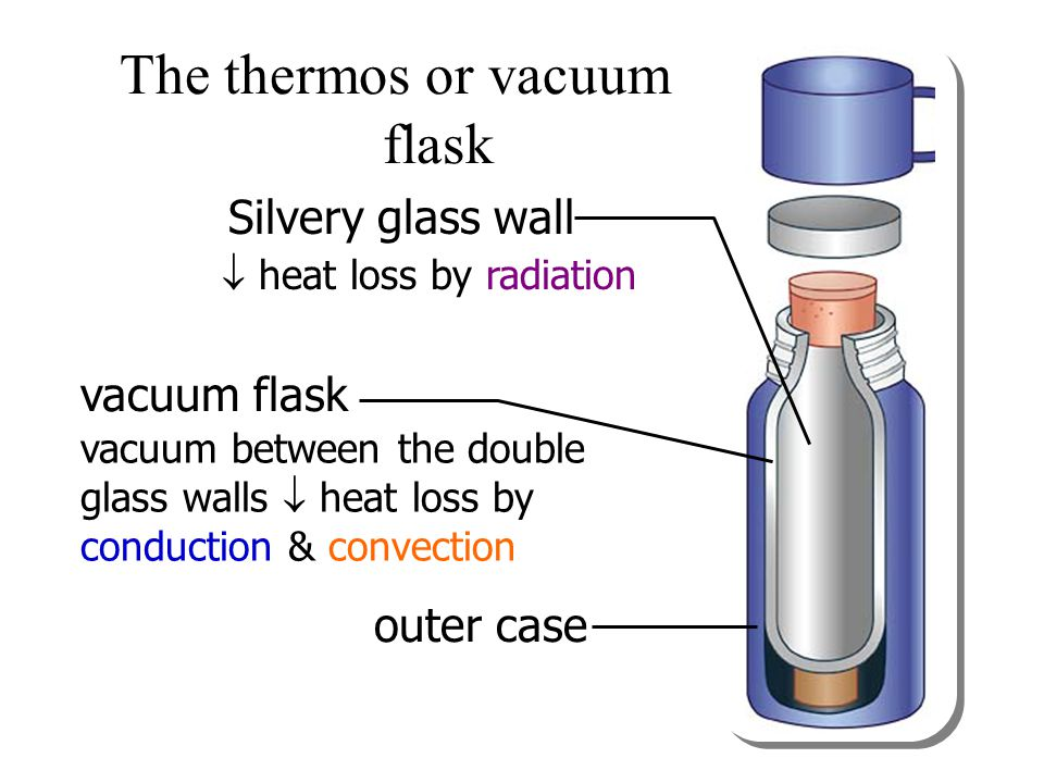 The thermos or vacuum flask
