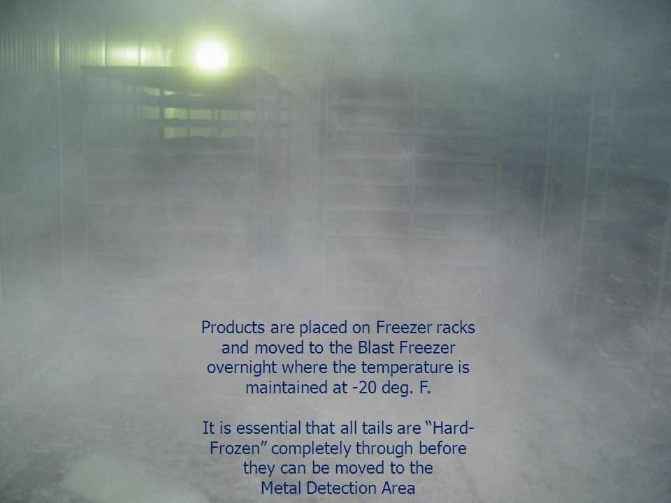 Products are placed on Freezer racks and moved to the Blast Freezer overnight where the temperature is maintained at -20 deg. F.