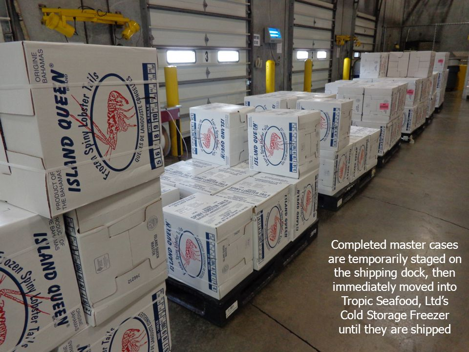 Completed master cases are temporarily staged on the shipping dock, then immediately moved into Tropic Seafood, Ltd's
