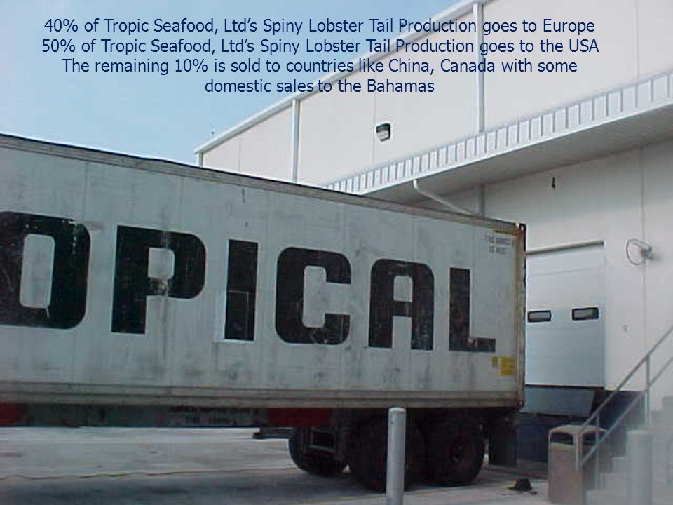 40% of Tropic Seafood, Ltd's Spiny Lobster Tail Production goes to Europe