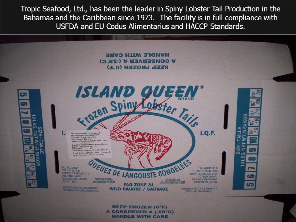 Tropic Seafood, Ltd., has been the leader in Spiny Lobster Tail Production in the Bahamas and the Caribbean since 1973.