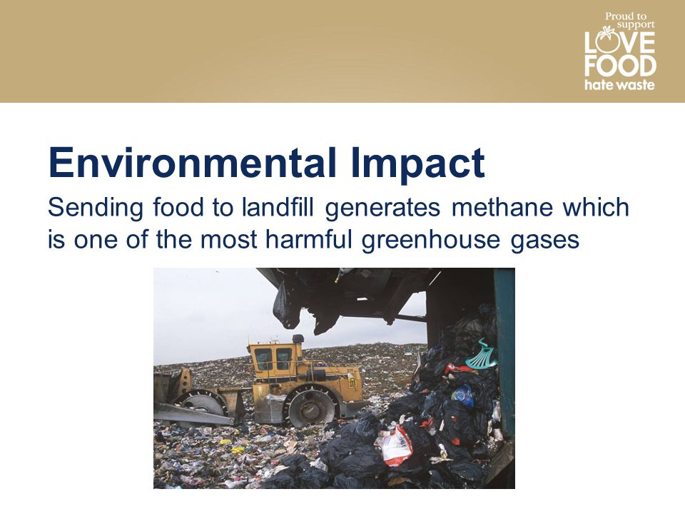 Environmental Impact Sending food to landfill generates methane which is one of the most harmful greenhouse gases.