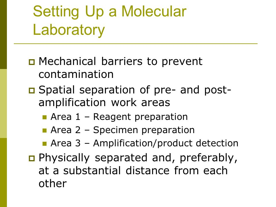 Setting Up a Molecular Laboratory