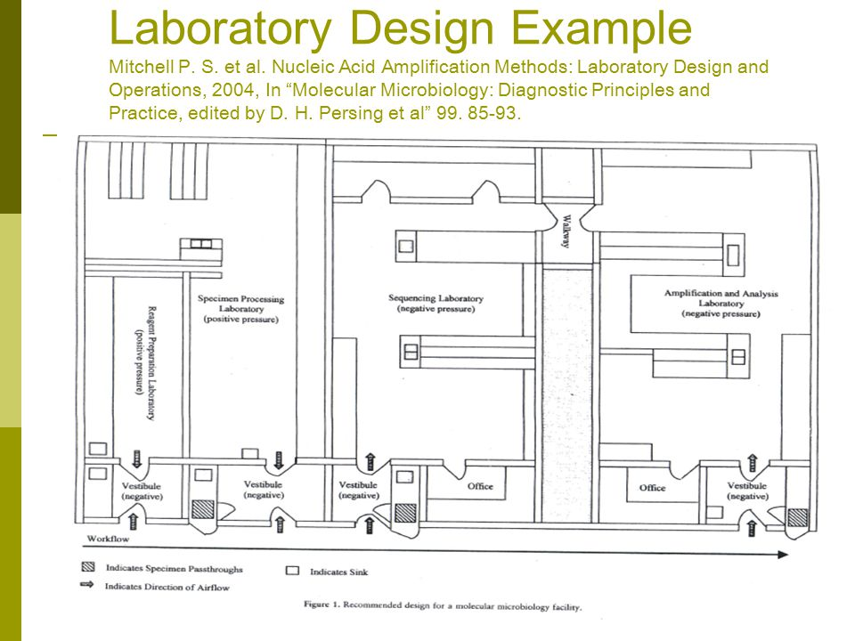 Laboratory Design Example Mitchell P. S. et al