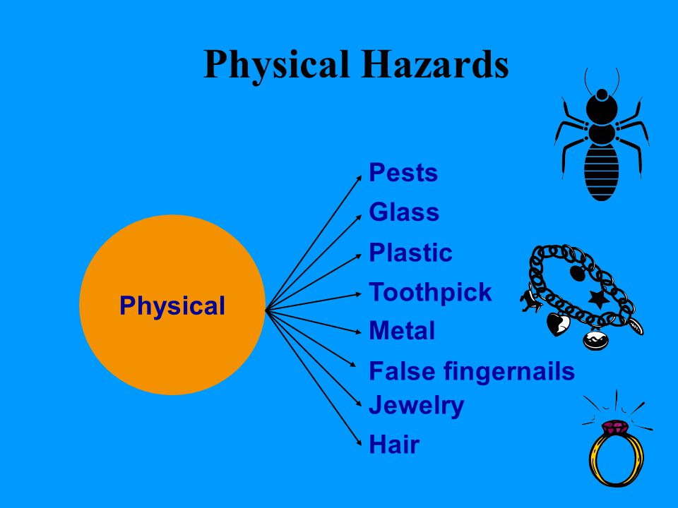 Physical Hazards Pests Glass Plastic Physical Toothpick Metal