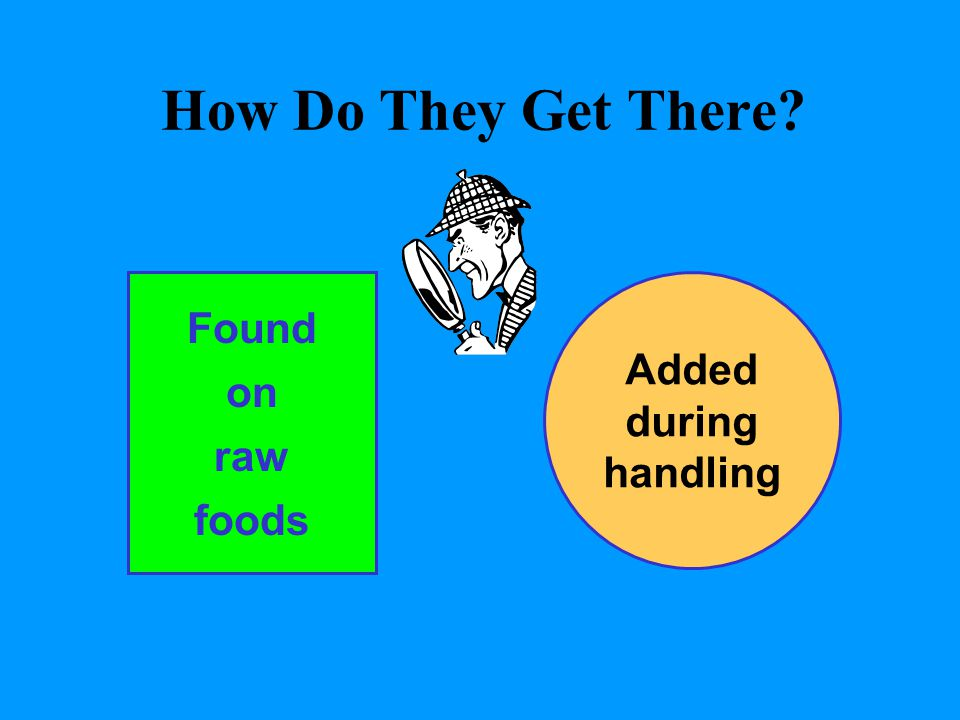 How Do They Get There Found on raw foods Added during handling and