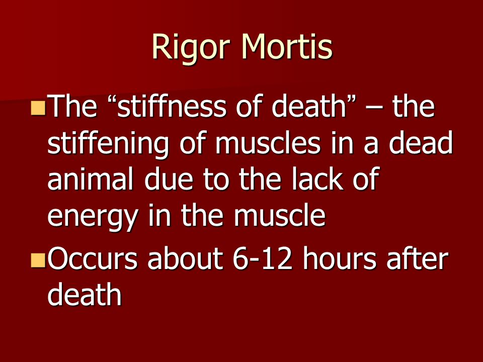 Rigor Mortis The stiffness of death – the stiffening of muscles in a dead animal due to the lack of energy in the muscle.